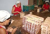 Além de comprar, visitante acompanha a produção