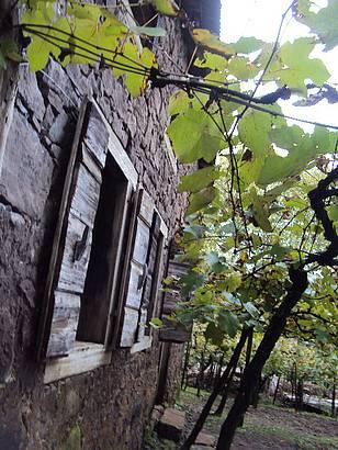 Cantina Strapazzon, Caminhos de Pedra