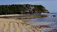 É uma Praia Exótica!