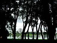 Vista geral do parque em meio ao bosque