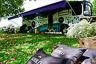Wine Truck � uma das atra��es no jardim