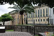 A cidade das mangueiras