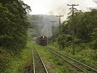 Passeio de trem Curitiba Paranaguá