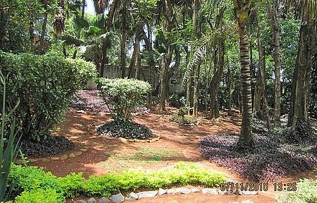 Parque Ecologico - Zoo de São Paulo não tem comparação, mas o de Americana é muito bom também.