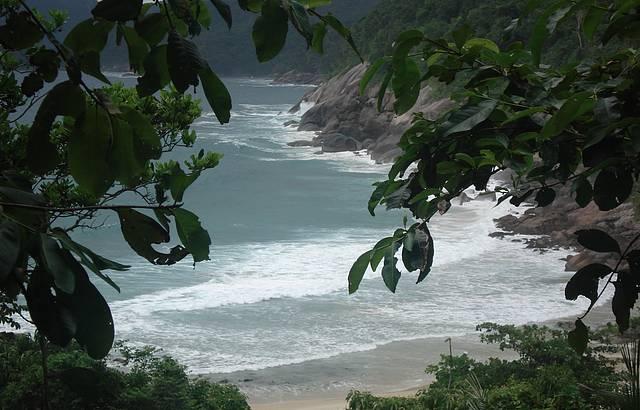 Trilha para praia Lopes Mendes