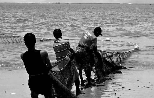 Arrast�o da Rede - Pesca Artesanal na Praia !