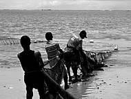Arrastão da Rede - Pesca Artesanal na Praia !