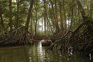 Passeio de barco é um dos atrativos da Fazenda São Jerônimo