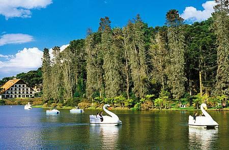 Triciclo sustentável - Lago Negro