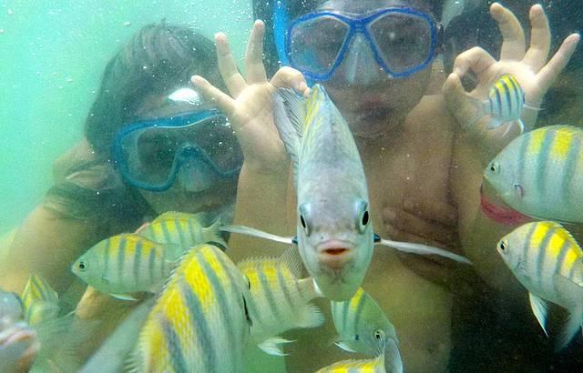 Mergulho em Paripueira - Maravilhoso