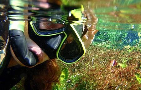 Aquário Natural - Linda flutuação