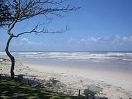 Linda Paisagem da Praia dos Milionários em Ilhéus