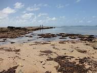 Os recifes ( maré baixa)
