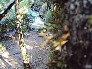 Cachoeira no final da trilha