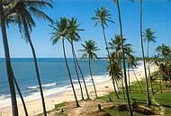 Litoral norte dda Paraíba, masi próximo ao Rio Grande do Norte, uma maravilha!