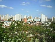 Mirante Dentro do Bosque, Imagem da Area Central de Ribeirão
