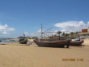 Passeio pelo Litoral Norte da Bahia