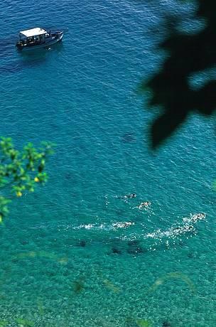 Transparência das águas impressiona e permite visibilidade perfeita