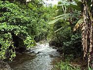 Um lugar para curtir a natureza preservada.