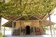 Enoteca guarda coleção de vinhos da marca