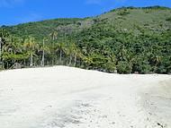 Areia branquinha  e palmeiras nos Meros