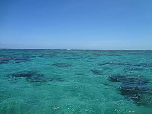 Mergulho nos parrachos de Maracajaú