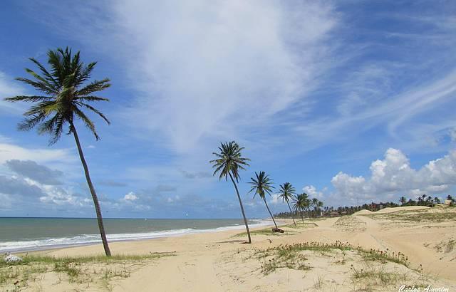 Praia, dunas e coqueiros