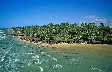 Encantos típicos do Ceará - Águas verdes e muito vento