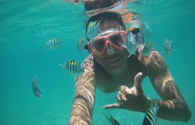 Mergulho no Pq Marinho Recife de Fora