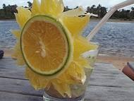 Drink na Margem do Rio Carapitangui