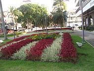 Belo jardim em frente à Prefeitura