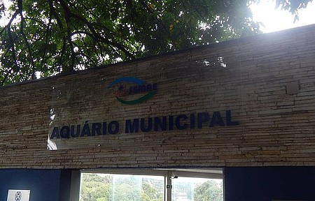 Aquário Municipal - Lugar Maravilhoso para Passear com as Crianças