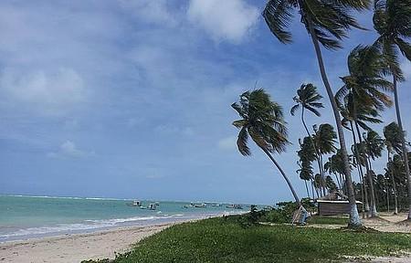 Praia de São Miguel dos Milagres - Uma das praias mais bonitas de Alagoas
