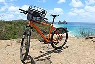 Bicicletas à disposição dos turistas!