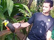 Viveiro dos tucanos