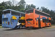 Ônibus Temático do Parque