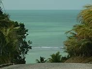 Praia da Pitinga, vista do alto.