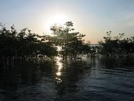 Navegando Pelo Rio