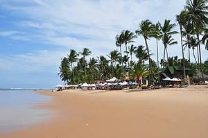 Taipus de Fora: Piscinas naturais e barracas de praia emolduram cenário -