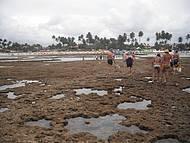 Vista dos corais para Vila.