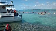 Piscinas Naturais / mergulho
