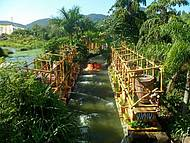 Madagascar Crazy River