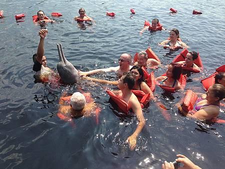 Encontro dos rios Negro e Solimões - Botos fazem a alegria dos visitantes