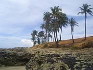 Passeio de bugui para Canoa Quebrada