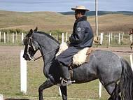 Rodeio de São Chico