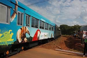 Trem do Pantanal: Passeio volta à ativa depois de 18 anos<br>