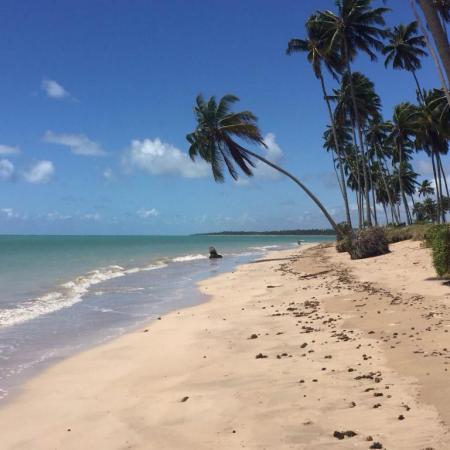 Praia da Lage - Cenários paradisíacos!