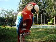Parque Florestal,bem no Centro