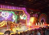 Show Madagascar