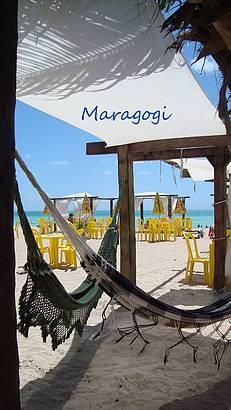 Sombra e �gua fresca em Maragogi